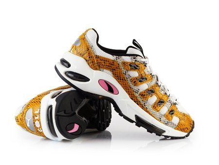Puma Cell Endura Animal Kingdom (370926-01)